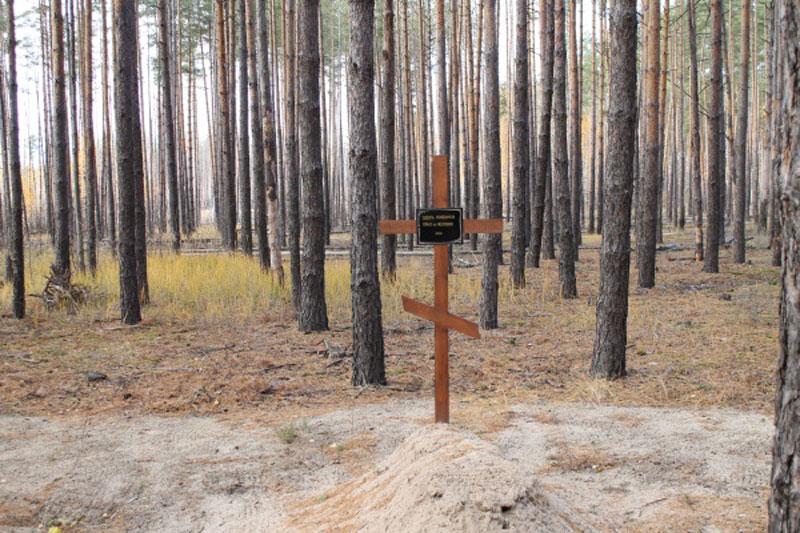 Дубовский лес, бывший полигон НКВД под Воронежем